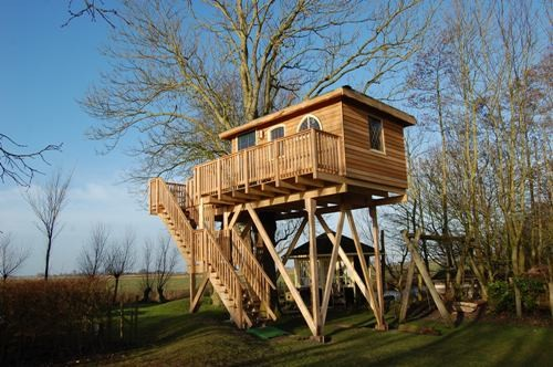 Tree lodge  in Alblasserdam
