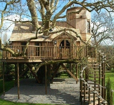 Castle like tree house