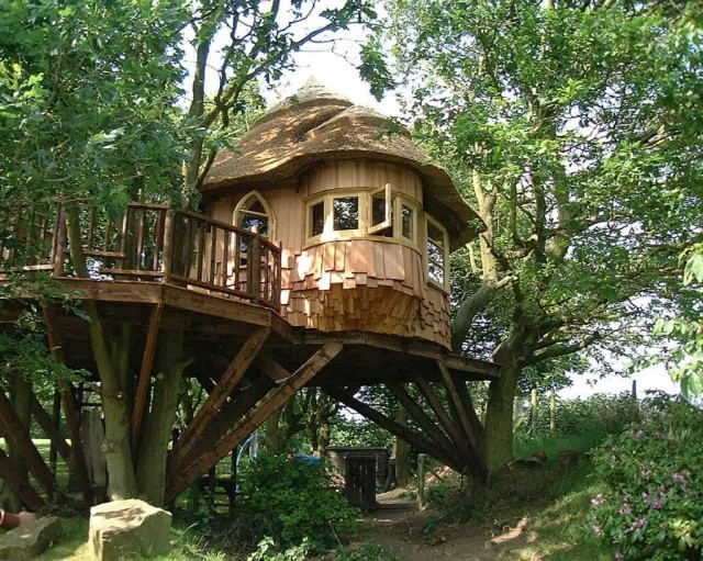 Treehouse in Lake District, UK