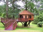 Treehouse in Surrey