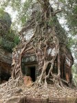 Koh Ker is a remote archaeological site in the north of Cambodia