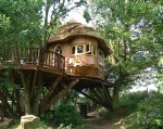 Treehouse in the Lake District