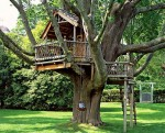 Tree house in old oak.