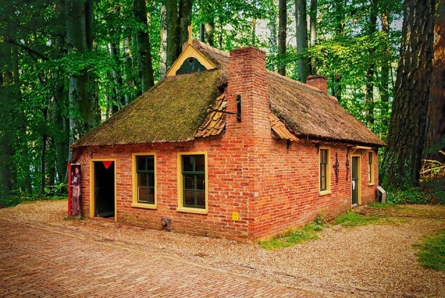 Tiny old cottage in the wood.