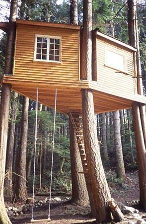 Tree house in the Cascade mountains