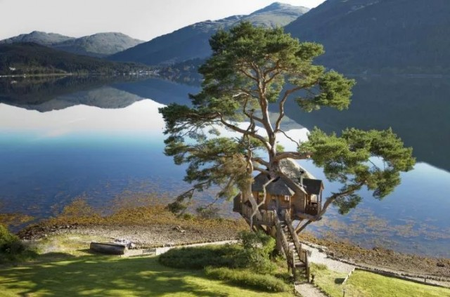 Treehouse at Loch Goil, Argyll in Scotland