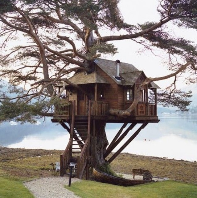 Treehouse At Loch Goil Argyll In Scotland